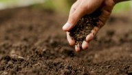 مكونات التربة