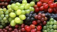 أنواع العنب