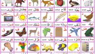 تعليم الحروف الأبجدية