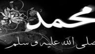 تاريخ وفاة الرسول محمد