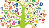 بحث عن مادة الرياضيات