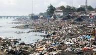 موضوع عن تلوث البيئة