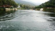 بحيرة بنشعي