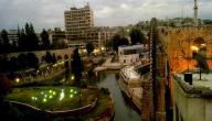 أين تقع مدينة حماة