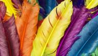 تعريف الألوان