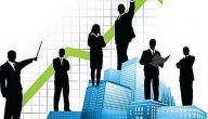 تطوير القطاع العام