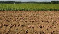 المحافظة على التربة