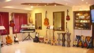 أنواع الآلات الموسيقية