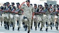 بحث عن جهود رجال الأمن في المحافظة على الأمن