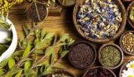 علاج الإدمان بالأعشاب