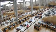 بحث عن مكتبة الاسكندرية