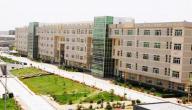 أين تقع جامعة الملك خالد