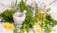أنواع الأعشاب الطبية