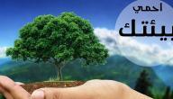 الحفاظ على التوازن البيئي