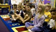 معلومات عن تخصص رياض الأطفال