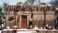 معلومات عن تراث الامارات