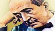 تعريف الكاتب أحمد شوقي