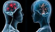 الفرق بين عقل الرجل وعقل المرأة