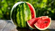 Benefits of Watermelon Red