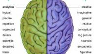 هل تستخدم الجانب الايمن ام الايسر من عقلك