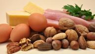 معلومات عن البروتين