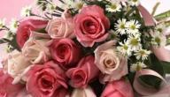 كلمات عن الورود