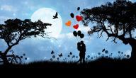 عبارات حب واشتياق للحبيب