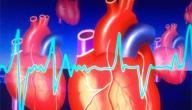 حمية الشرق الأوسط و تأثيرها على أمراض القلب و الشرايين