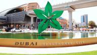 مدينة دبي الطبية