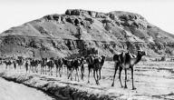 تاريخ الجنوب العربي