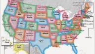 ولايات أمريكية