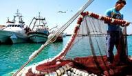 الصيد البحري