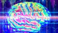 أثر المخدرات على الجهاز العصبي