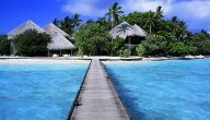 جزيرة فيجي