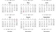 كم عدد أيام السنة
