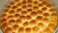 طريقة ومكونات خلية النحل