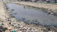 تعريف تلوث المياه
