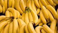 فوائد الموز للحامل في الشهور الأولى
