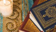 من هو ترجمان القرآن الكريم