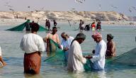 صيد السمك في عمان