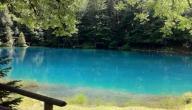 البحيرة الزرقاء إنترلاكن