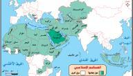 دول العالم الإسلامي
