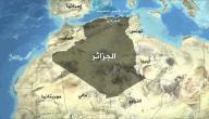 من يحكم الجزائر