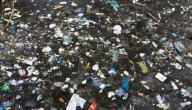 مقال علمي عن التلوث