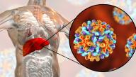 فيروس الكبد ب