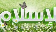 مفهوم الإسلام