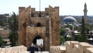 دولة سوريا