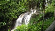 تقرير عن جزيرة لنكاوي