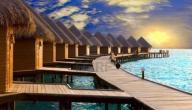 تقرير عن السياحة في جزر المالديف