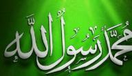 صفات النبي الخلقية والخلقية